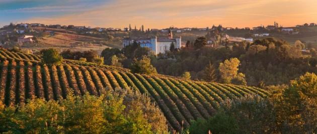 Costigliole d'Asti landscape  (Piedmont, Italy)