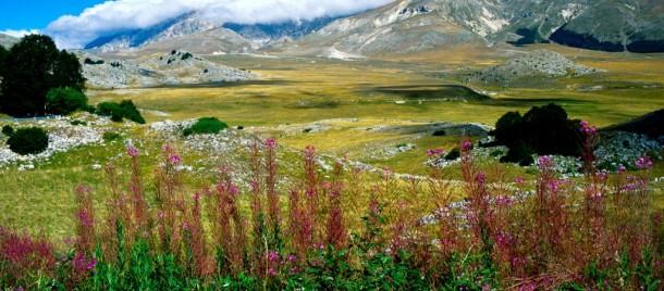 field emperor campo imperatore plateau mountains of the Gran Sasso National Park Abruzzo
