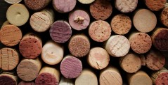 Close up of a cork wine with different variation of wine color, Chianti, Italy